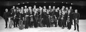 OrchestrePasdeLoup